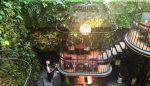 8 quán cafe cây xanh hot nhất Sài Gòn
