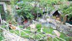 Thiết kế quán cafe cây xanh đẹp mắt, hút khách