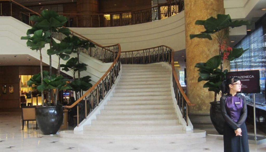 Gợi ý cây cảnh cho dự án khách sạn