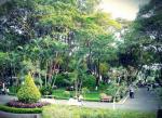 Top 7 công viên cây xanh đẹp nhất TPHCM