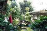 5 Quán Cafe Cây Xanh Độc Đáo Được Yêu Thích Nhất Tại Tây Ninh