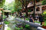 Top 10 Quán Cafe Cây Xanh Đẹp Nhất Tại Gò Vấp