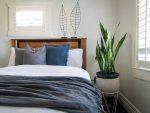 Tiết lộ những cây để phòng ngủ tốt cho sức khỏe và lưu ý khi chọn cây