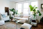 Trồng cây trong căn hộ chung cư đơn giản hơn bao giờ hết