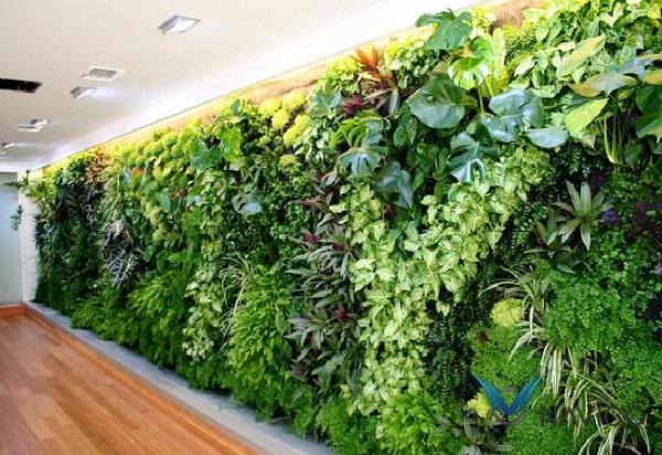 Khung thép chịu lực được ví như xương sống của tường cây xanh