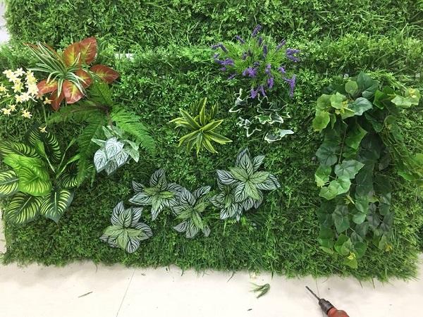 Cây có thể trồng trên tường cây xanh là các loại cây bụi, cây rễ, cây leo